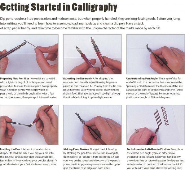 After Patiently Practicing Basic Shapes And Carefully Crafting Even Pen Strokes Its Time To Proceed Some Calligraphy Terminology Learn How