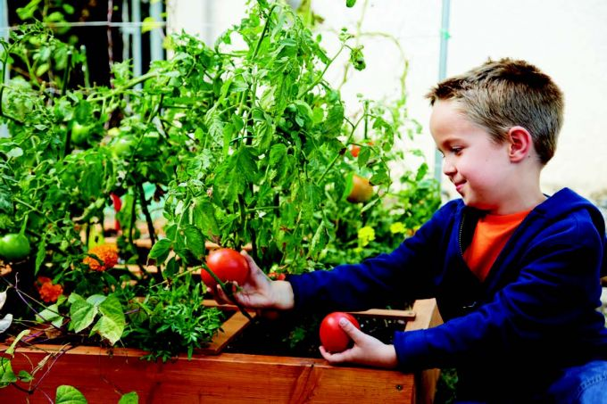 Tips for Gardening with Kids | Quarto Knows Blog
